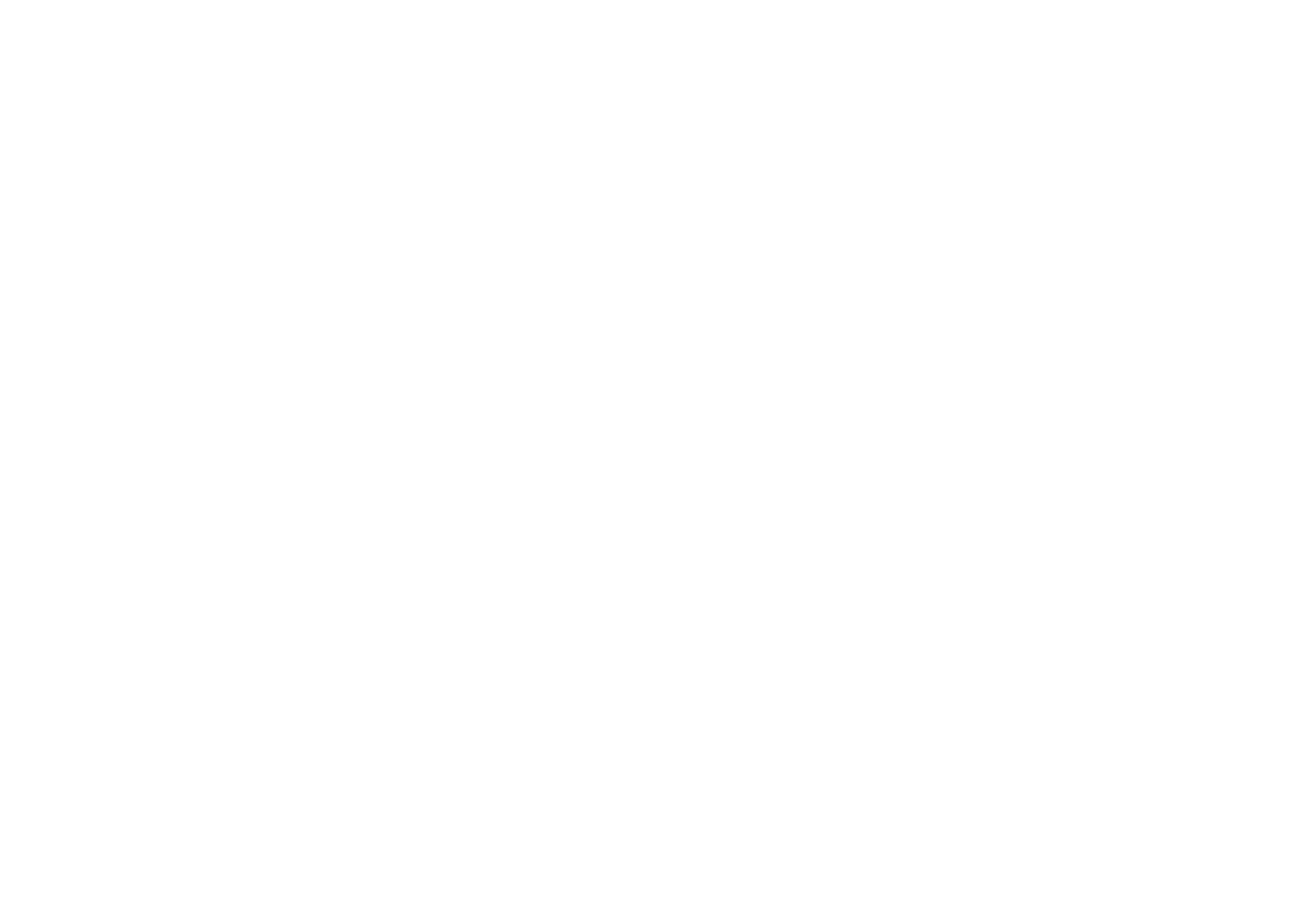 Platinum Performance LLC